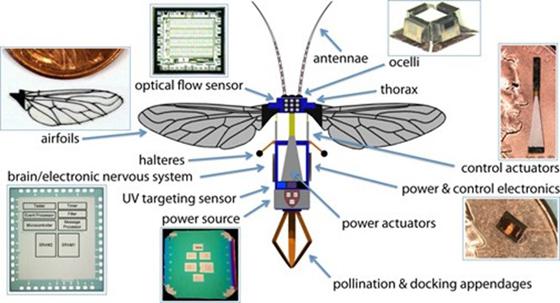 abejas-robot-polinizadoras-2