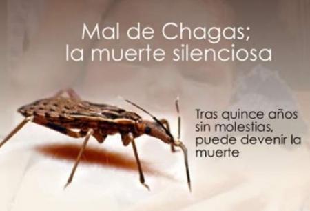 descifran-genoma-del-mal-de-chagas-61