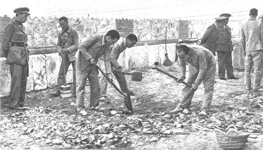 Trabajos-forzados
